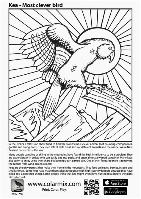 colar app coloring pages colouring pages for quiver home quiver d augmented