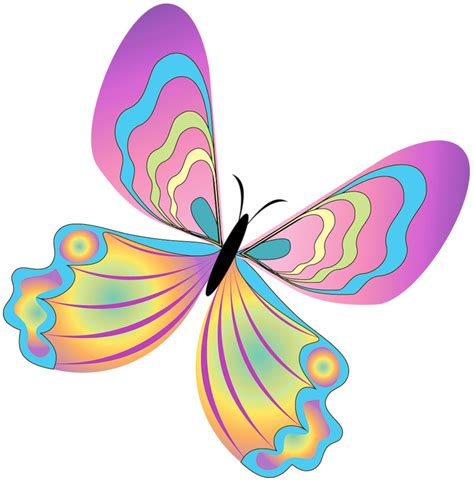 free butterfly clipart butterflies clip cliparts co