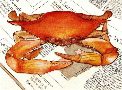 Boiling Crab Gift Card - boiled crab painting by june holwell
