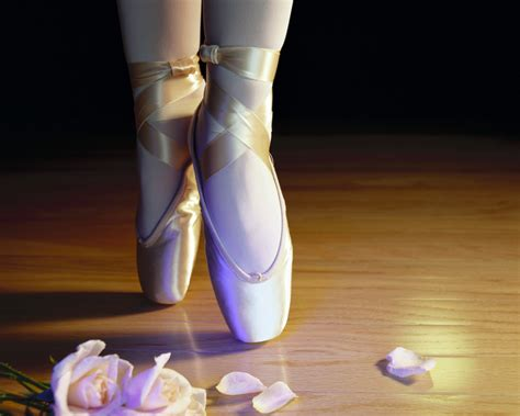 ballet shoes for perfume ballet shoes