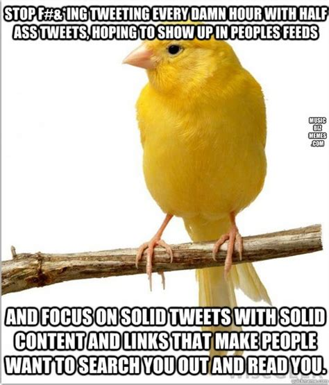 Bird Shit Meme - 22 best images about funny music memes from loren weisman on pinterest large fan music memes