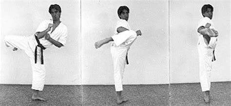 round house kick ken zen ichii karate association ken zen ichii ryu karate