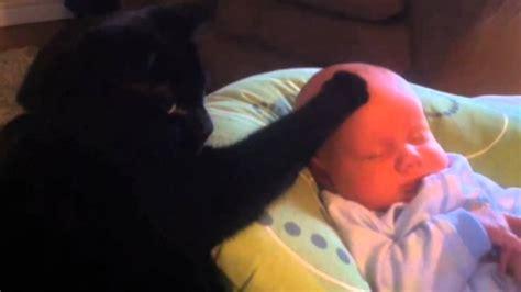 baby kommt nicht in den schlaf katze streichelt baby in den schlaf