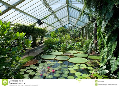 lily house the waterlily house kew gardens stock photo image 25950008