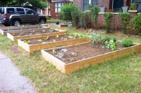 Spotted: Front Yard Vegetable Garden   Eat Drink Better