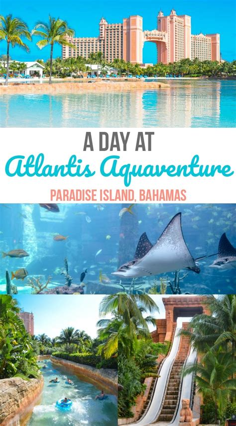 atlantis comfort suites day pass questions a day at atlantis aquaventure paradise island bahamas