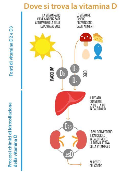 vitamina d alimenti dove si trova vitamina d carenza alimenti e integratori
