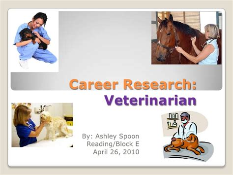 on being a veterinarian book 2 getting the most out of vet school volume 2 books spoon 2010 veterinarian research project 2