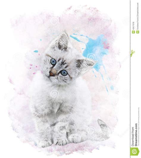 watercolor image of white kitten stock illustration image 43571378