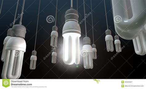 leadership hanging lightbulb stock photo image 46423427