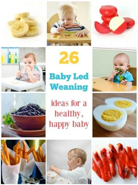 baby led weaning 70 26 baby led weaning foods for a healthy happy baby baby led weaning foods weaning foods and