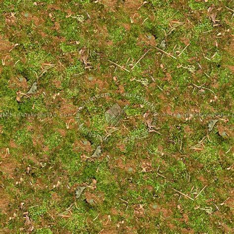 Brown Round Rugs Undergrowth Green Grass Texture Seamless 13041