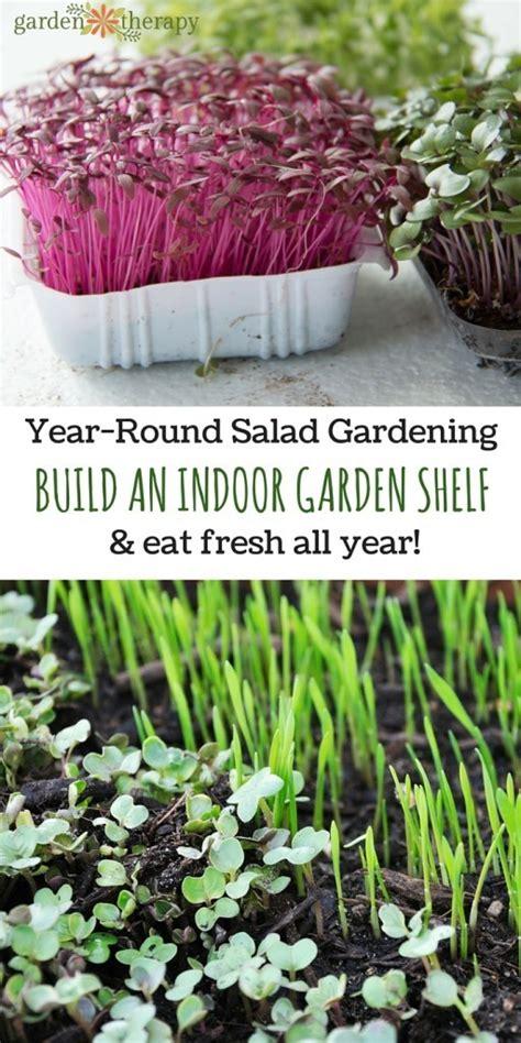 year round salad gardening how to build an indoor garden