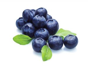 carbohydrates blueberries blueberries nutrition health benefits and adverse health