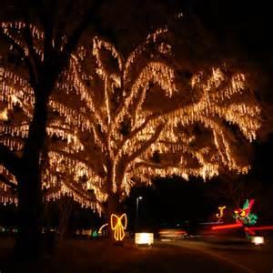 holiday festival of lights charleston sc top 10