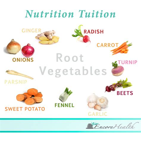 healthiest root vegetables root vegetables nutrient benefits encore health