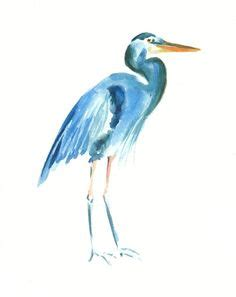 1000 images about great blue heron on blue heron herons and watercolor print