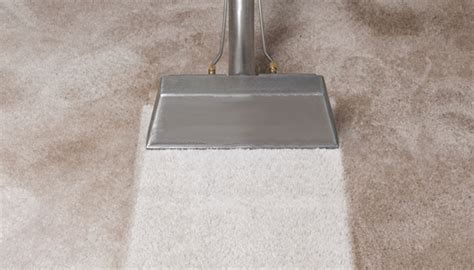 sears upholstery cleaning reviews sears carpet cleaning reviews phoenix carpet review