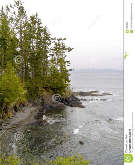 pacific northwest design royalty free stock photos image pacific northwest beach royalty free stock photography