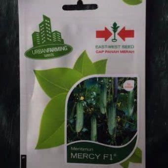 benih timun hibrida mercy f 1 175btr panah merah benih ketimun mercy f1 50 biji panah merah bibitbunga