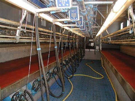 swing melkstand melktechnik aus yspertal swingover melkstand und