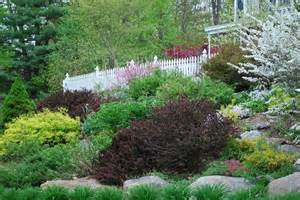 Landscape Pictures Slope Landscaping Ideas For Slopes Slope Landscape Like The