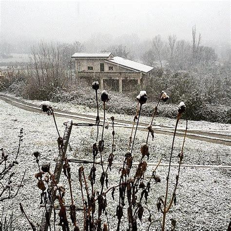 meteo san in fiore domani neve temperature in picchiata e pioggia in calabria le