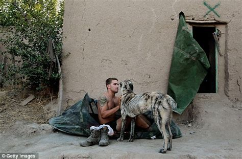 the real war dogs the real dogs of war intimate images show soldiers caring for the animals who