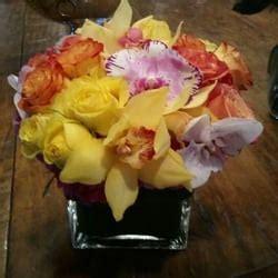 The Empty Vase West by The Empty Vase Florist 78 Billeder Planteskoler Og