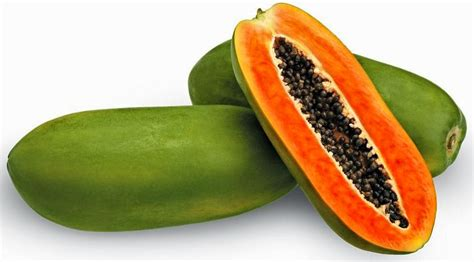 Pepaya California health benefits of papaya fruit for smooth digestion and healthy health benefits of plants