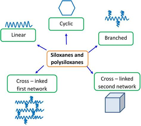 frontiers direct human contact  siloxanes silicones