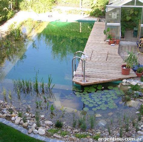 imagenes de jardines acuaticos fotos de biopiscina piletas naturales jardines acu 225 ticos