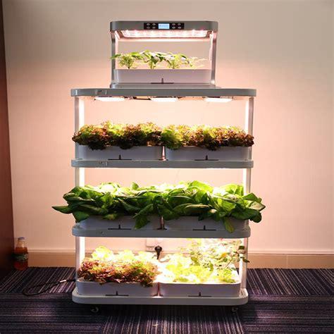 indoor farming exsips plant stand aquaponics strawberry