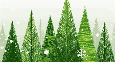 ecological christmas trees five golden tips for a lower carbon carbon trust