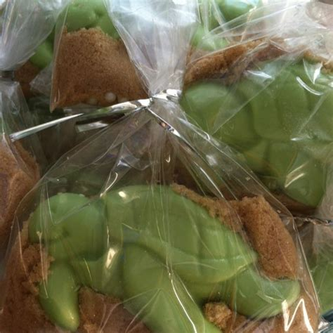 Turtle Baby Shower Favors by Turtle Baby Shower Favors Baby Shower Ideas