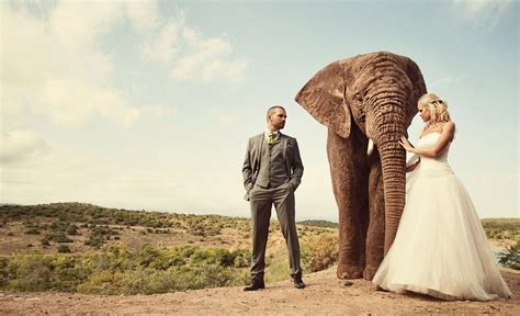 Wedding South Africa by Erik S South Wedding Pdn Photo Of The Day