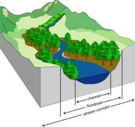 what is wetland restoration