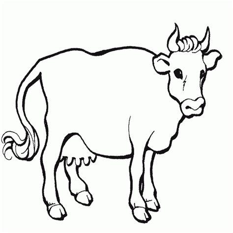 imagenes cool de animales 15 dibujos animales domesticos para colorear e imprimir