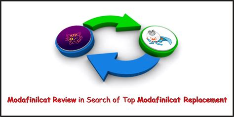 Best Search Reviews Modafinilcat Review In Search Of Top Modafinilcat Replacement
