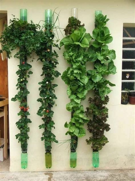 vertical wall gardening 13 plastic bottle vertical garden ideas soda bottle