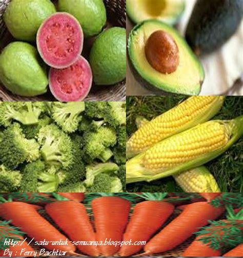 Sikat Buah Dan Sayuran Multifungsi kandungan serta khasiat beberapa buah dan sayuran berbagai artikel menarik