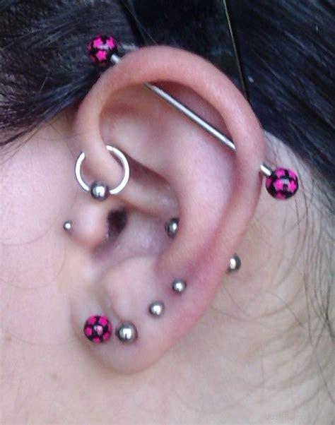 ear types ear piercing types www imgkid the image kid has it