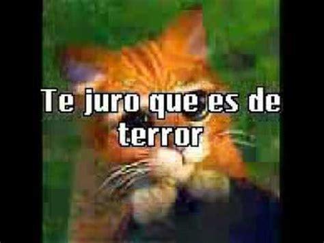 imagenes perronas de terror imagenes graciosas de terror youtube