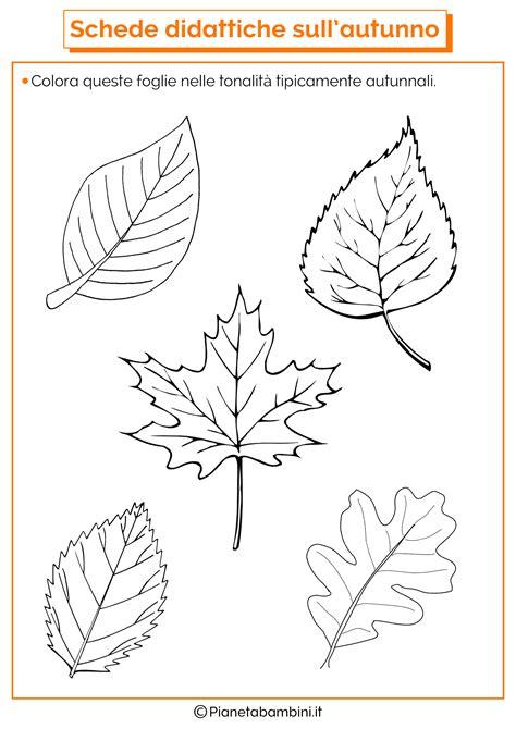 canzone ci vuole un fiore illustrata storia i tre alberi disegni da colorare