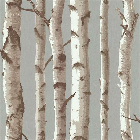 Birch Wall Mural papier peint bouleau fond taupe castorama