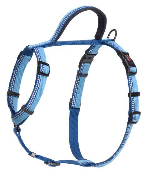 walking harness halti walking harness company of animals