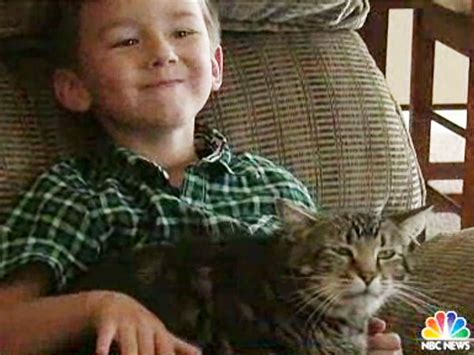 cat saves boy from cat saves boy from family