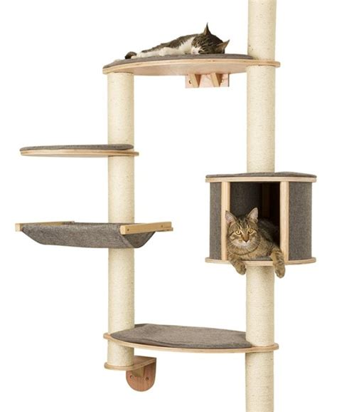 wall mounted cat tree www imgkid com the image kid has it