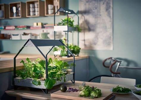 ikea indoor gardens produce food year   homes