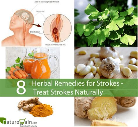 8 powerful herbal remedies for strokes treat strokes naturally